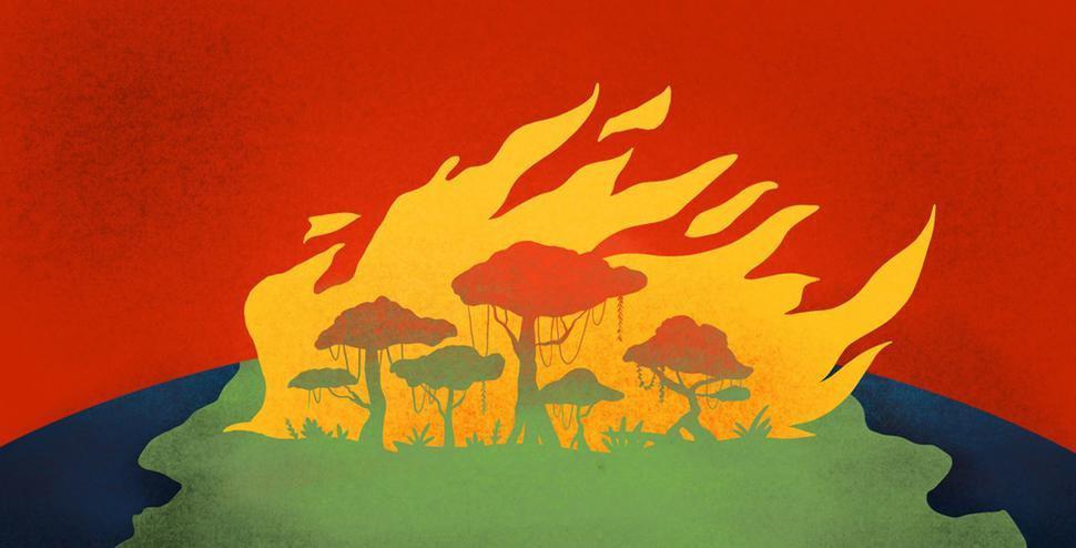 6 Weisen, die Umwelt zu schonen