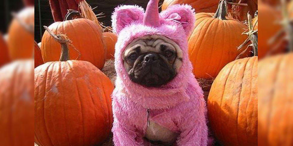 16 Reasons October Is The Best Month