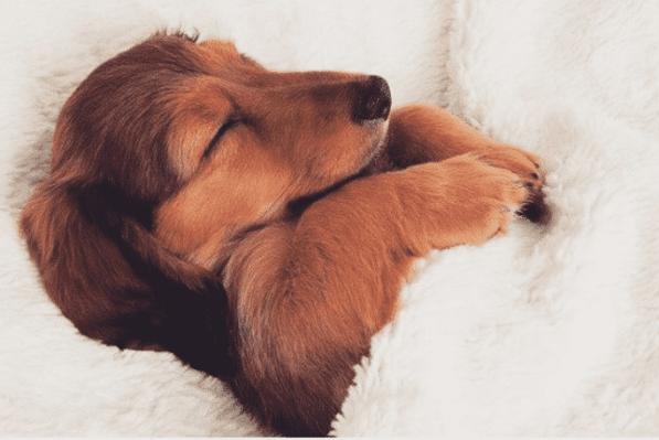 5 Ways To Improve Your Sleep Pattern
