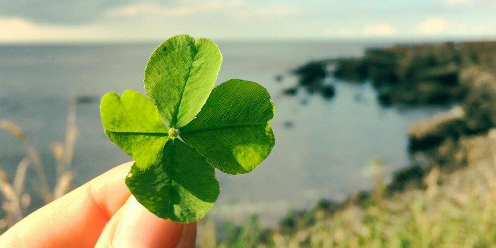 Das Glücksrad – so geht's