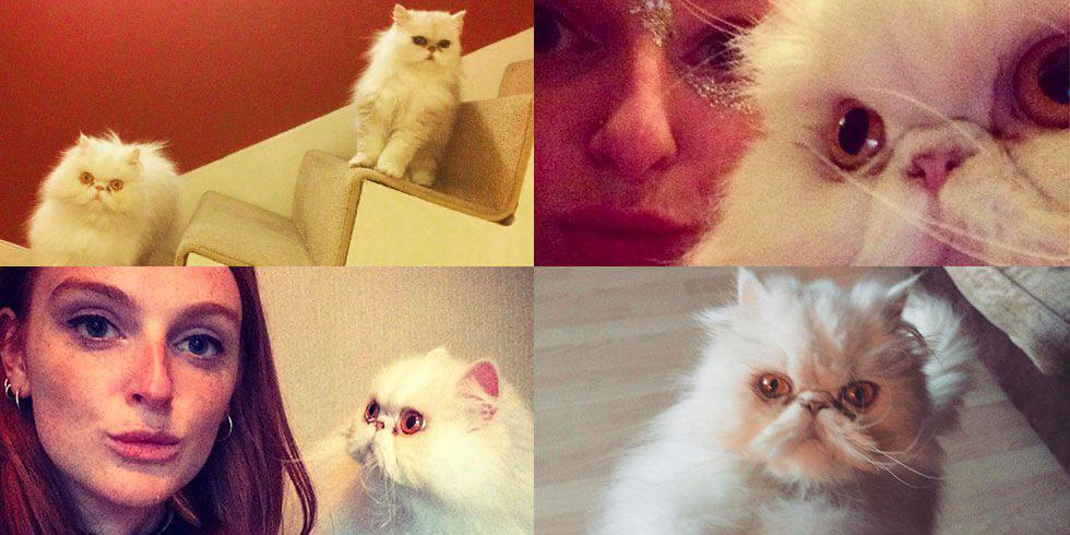 9 times Maddy gave us pet goals